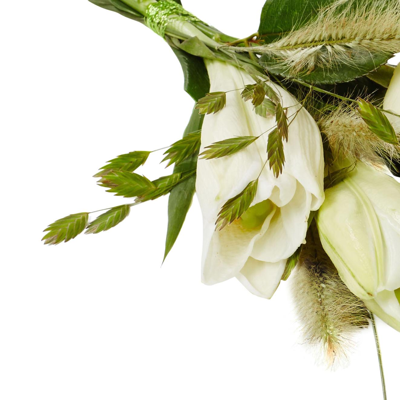 Handblomma lilja