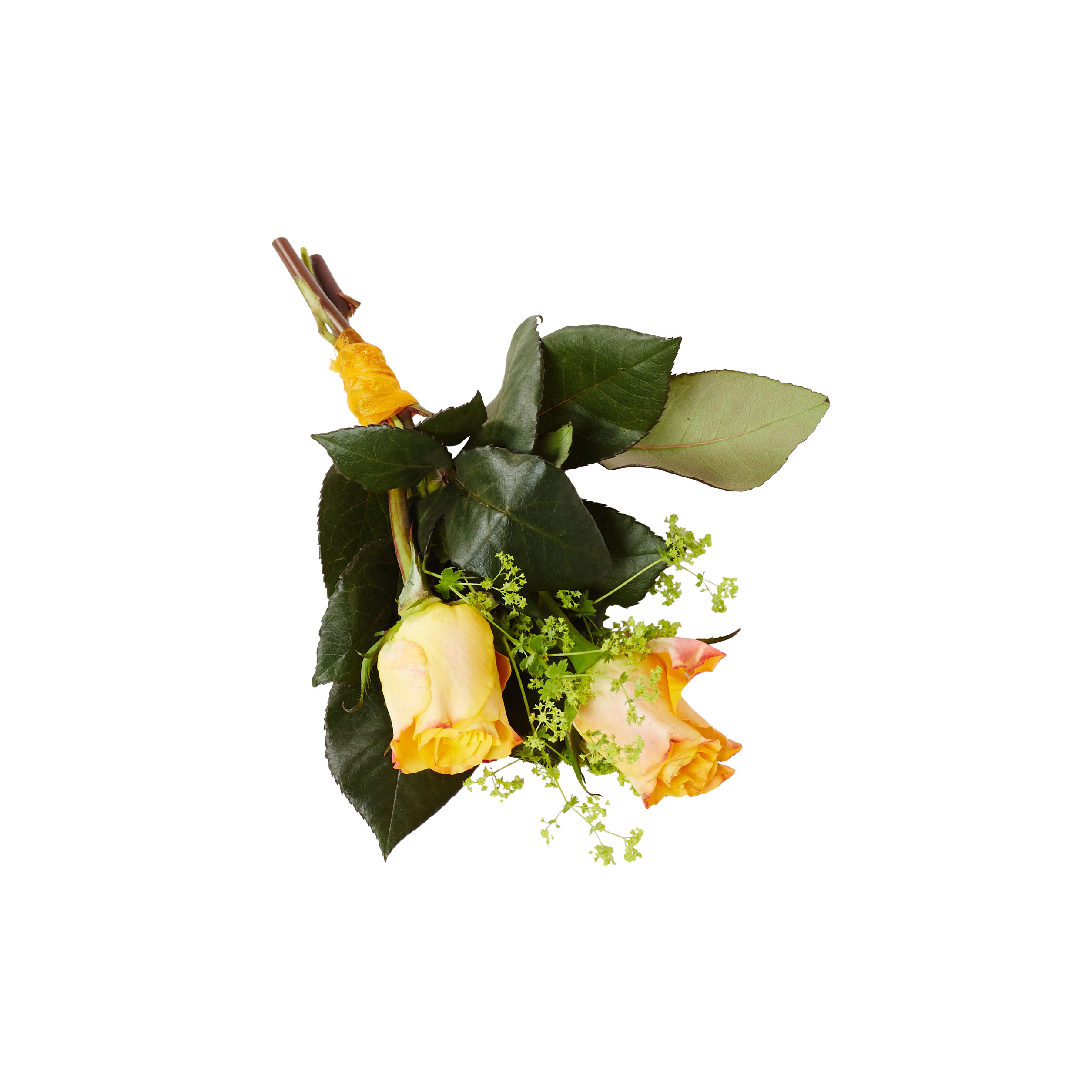 blommor begravning vett och etikett