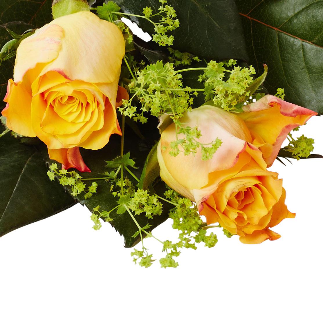 Handblomma två rosor