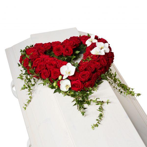Begravningsblommor med röda rosor, vita orkidé klockor samt vackra hängandes murgröna som formar ett öppet hjärta på vit begravningskista.