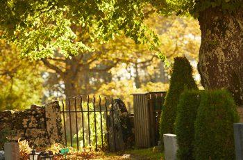 Lavendla-Begravningsbyrå-Generisk-gravplats