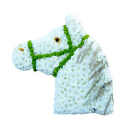 Begravningsblomma med vita blommor som utformar en häst i profil med grön träns,och gula blommor som motsvarar öga och nos.Hästen är ett personligt arrangemang.