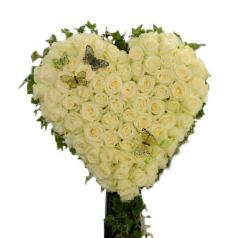 Begravningsblomma med rosenhjärta som smyckas med vita rosor samt ett par fjärilar. Runt hjärtat slingrar vackert murgröna sig runt. Dekorationen är i mitten av en vit bakgrund.