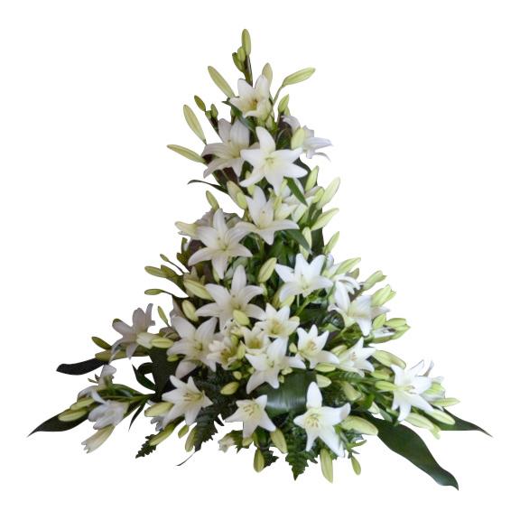 Stor sorgbukett i grön och vitt med flertal vackra vita liljor. Sorgbuketten ligger i mitten av en vit bakgrund och är en begravningsblomma.