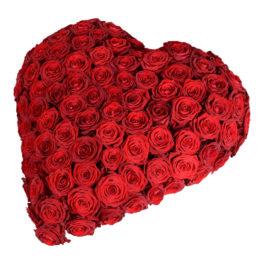 Begravningsblomma bestående av 70 stora röda rosor som formar ett fyllt rött hjärta. Hjärtat är en sorgdekoration och är i mitten av en vit bakgrund.