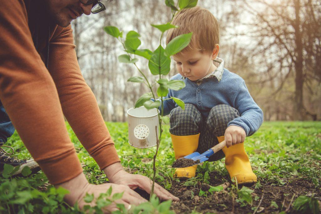 barn i sorg, barns sorg, plantera minnesträd