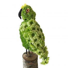 papegoja begravningsblommor lavendla