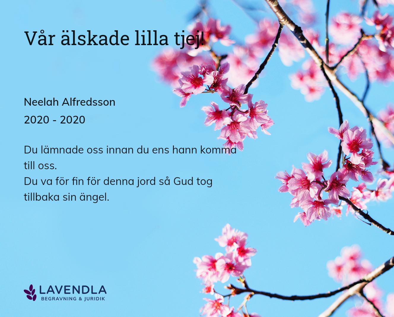 Inbjudningskort till ceremonin för Neelah Alfredsson